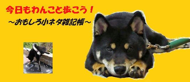 今日もわんこと歩こう!〜おもしろ小ネタ雑記帳〜